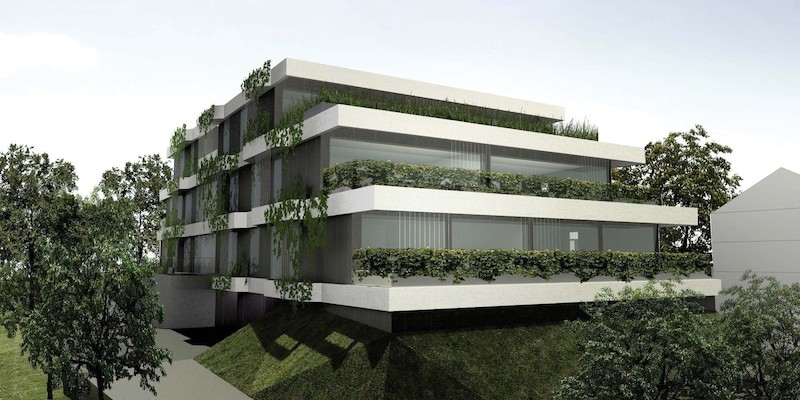 Vila Grbina - Prihajajoči projekt